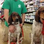Georgia Adoptable Dogs for September 19, 2013