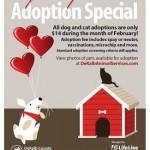 Adoptable Georgia Dogs for February 14, 2014