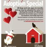 Adoptable Georgia Dogs for February 20, 2015