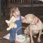 Adoptable Georgia Dogs for April 22, 2016